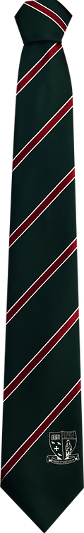 School Boys green tie red and white stripe