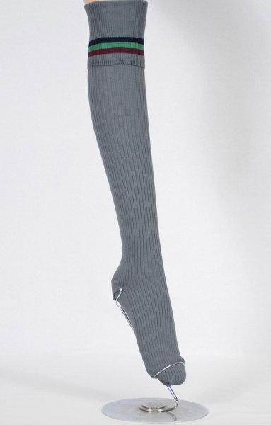 school sock side view long banded
