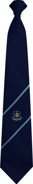 School Boys navy tie double stripe