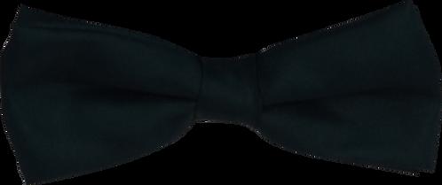 School Boys black Bow tie