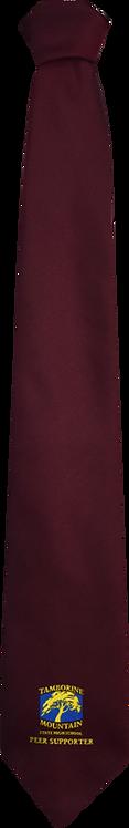 School Boys maroon tie