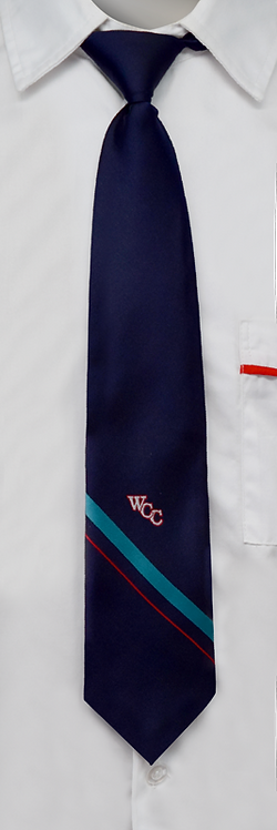 TI059 | School Girls Tie