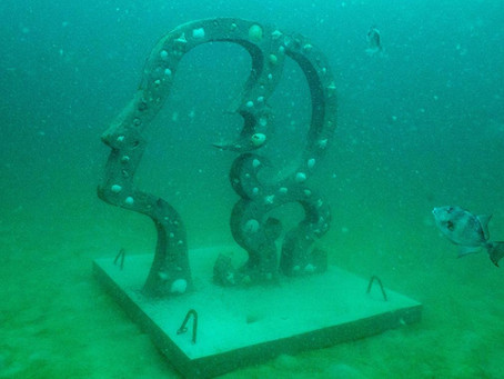 CAA and SWARA Collaborate To Expand Underwater Museum of Art