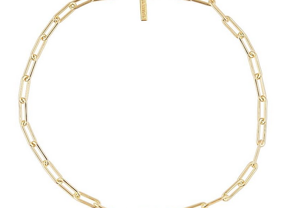 Carrie Link Necklace