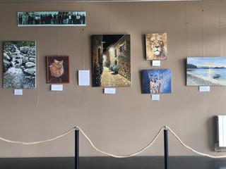 Exposició de Josep M. Luján