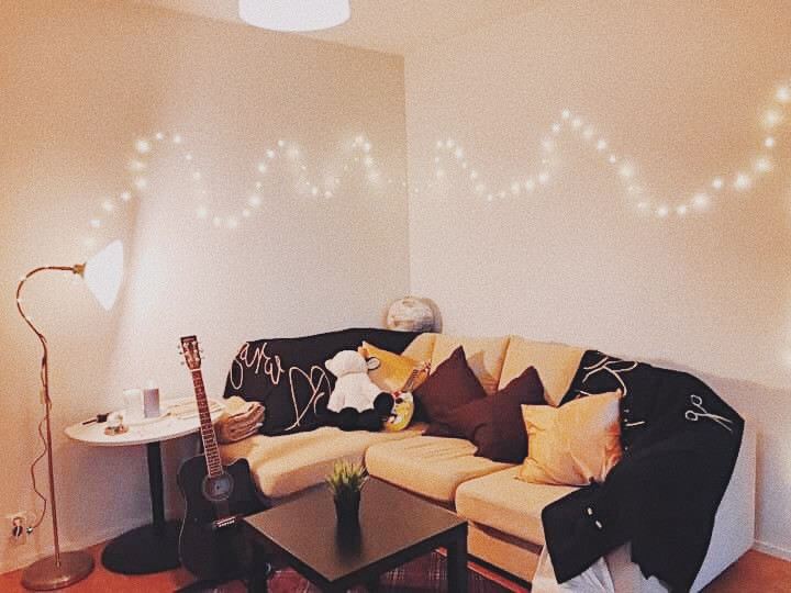 Living room in Hoas apartment