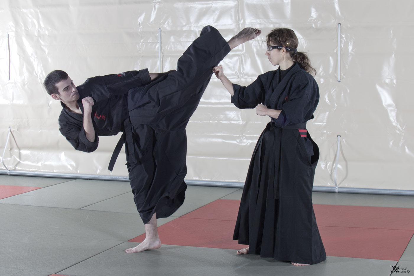 Mushin Ryu Ju Jutsu - Mawashi geri