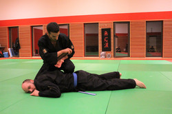 Mushin Ryu Ju Jutsu - Kansetsu waza