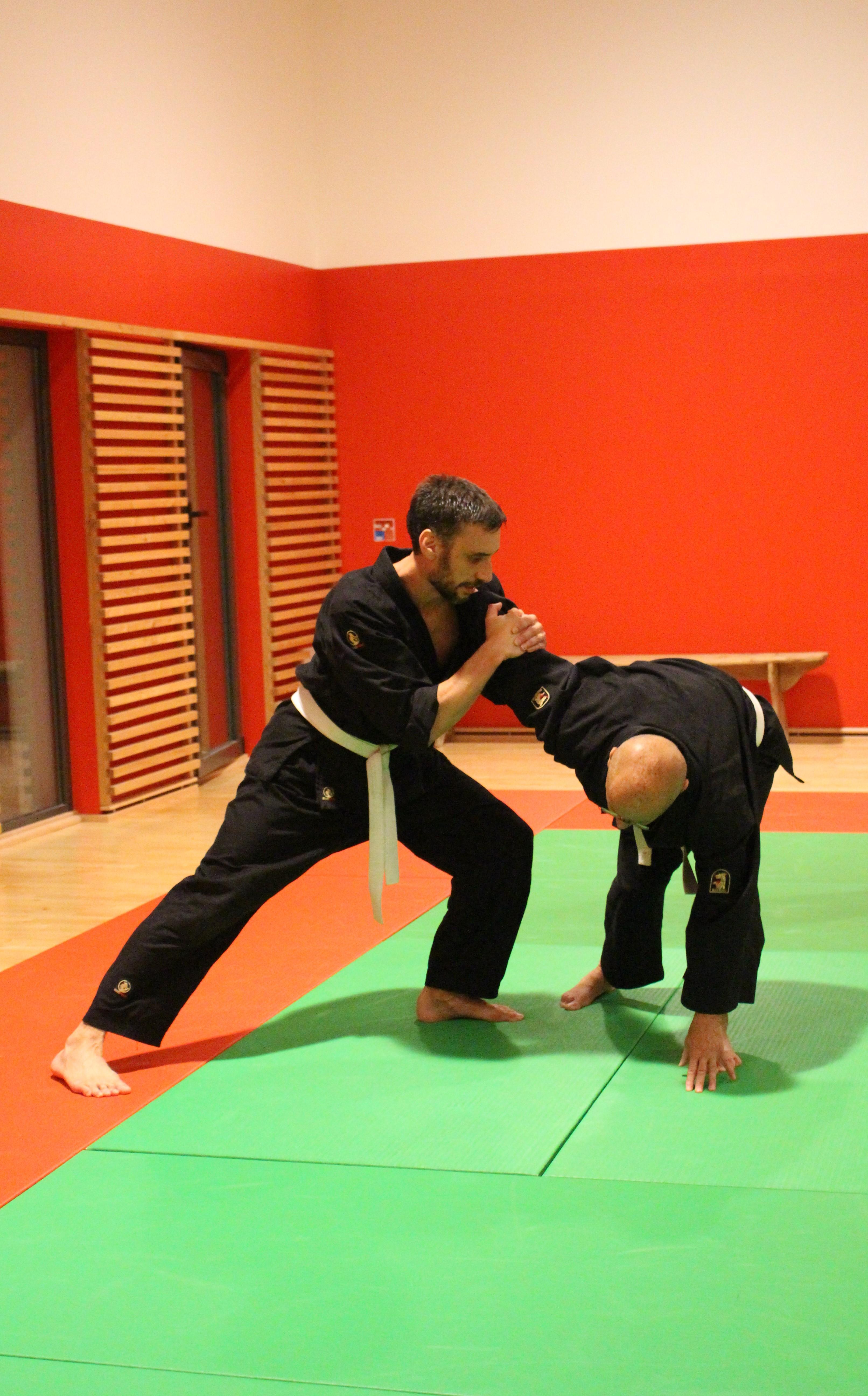 Mushin Ryu Ju Jutsu - Ude gatame