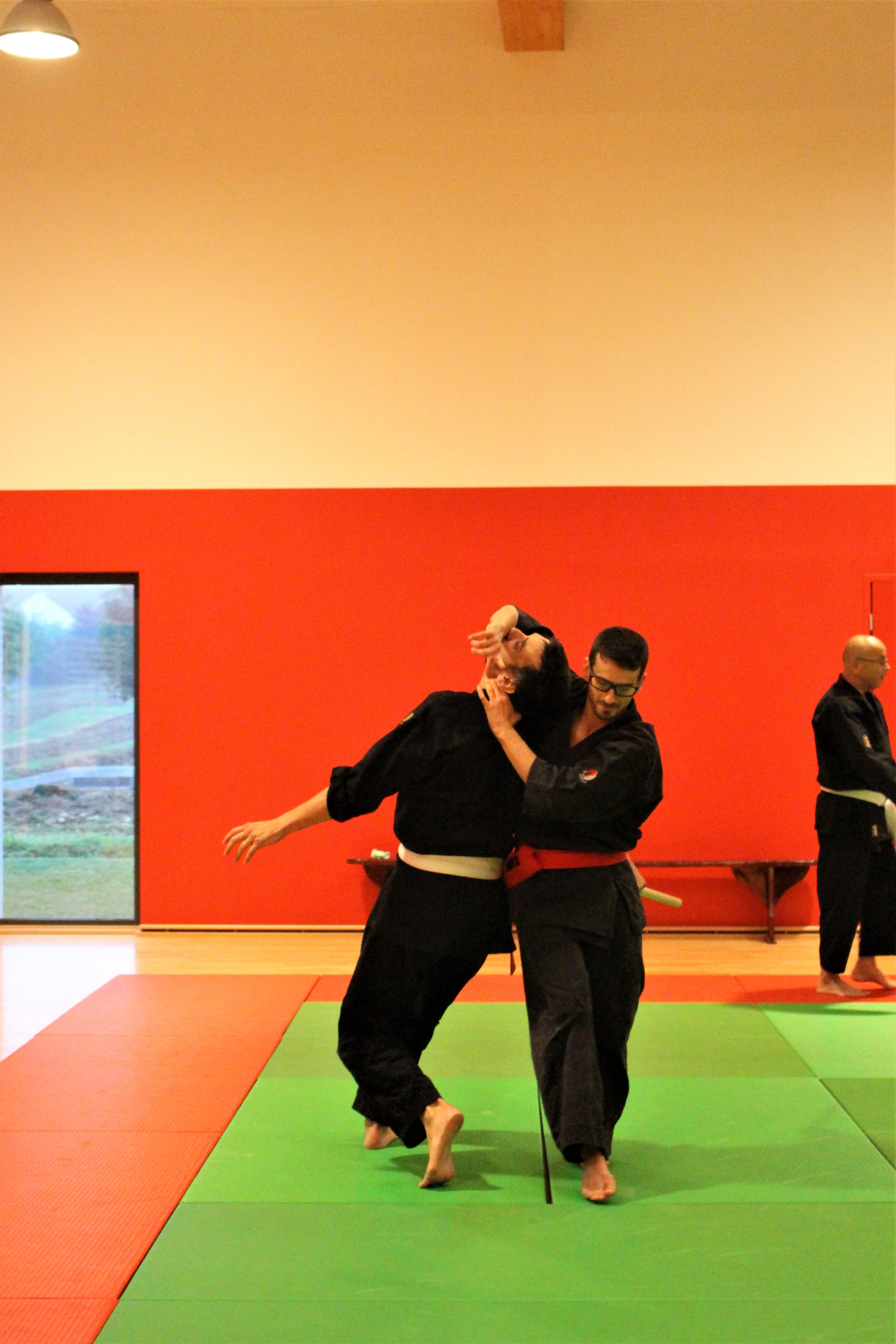 Mushin Ryu Ju Jutsu - Irimi nage