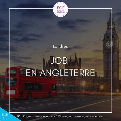 Job étudiant en Angleterre | Student job in England | STANDARD