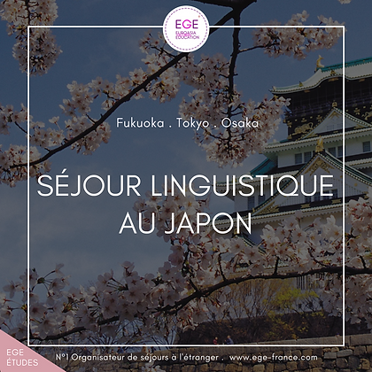 Séjour linguistique au Japon | Language Travel in Japan | STANDAR