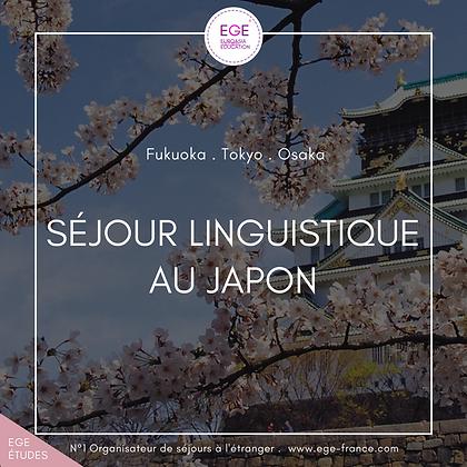 Séjour linguistique au Japon | Language Travel in Japan | COMFORT