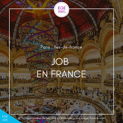 Job étudiant en France | Student job in France | STANDARD