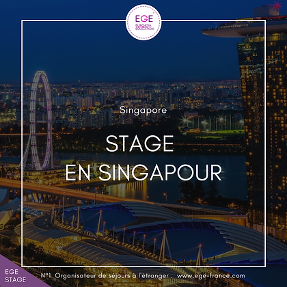 Stage en Singapour | Internship in Singapore | SMART