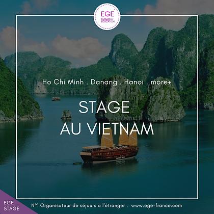 Stage au Vietnam | Internship in Vietnam | COMFORT