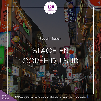 Stage en Corée du Sud | Internship in South Korea | COMFORT