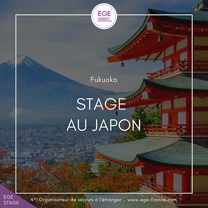 Stage au Japon | Internship in Japon | COMFORT