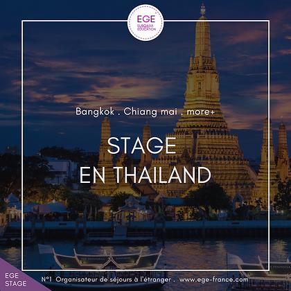 Stage en Thaïlande | Internship in Thailand | STANDARD