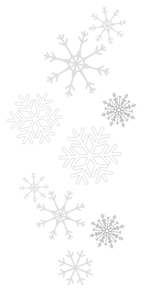 Snowflakes-3.png