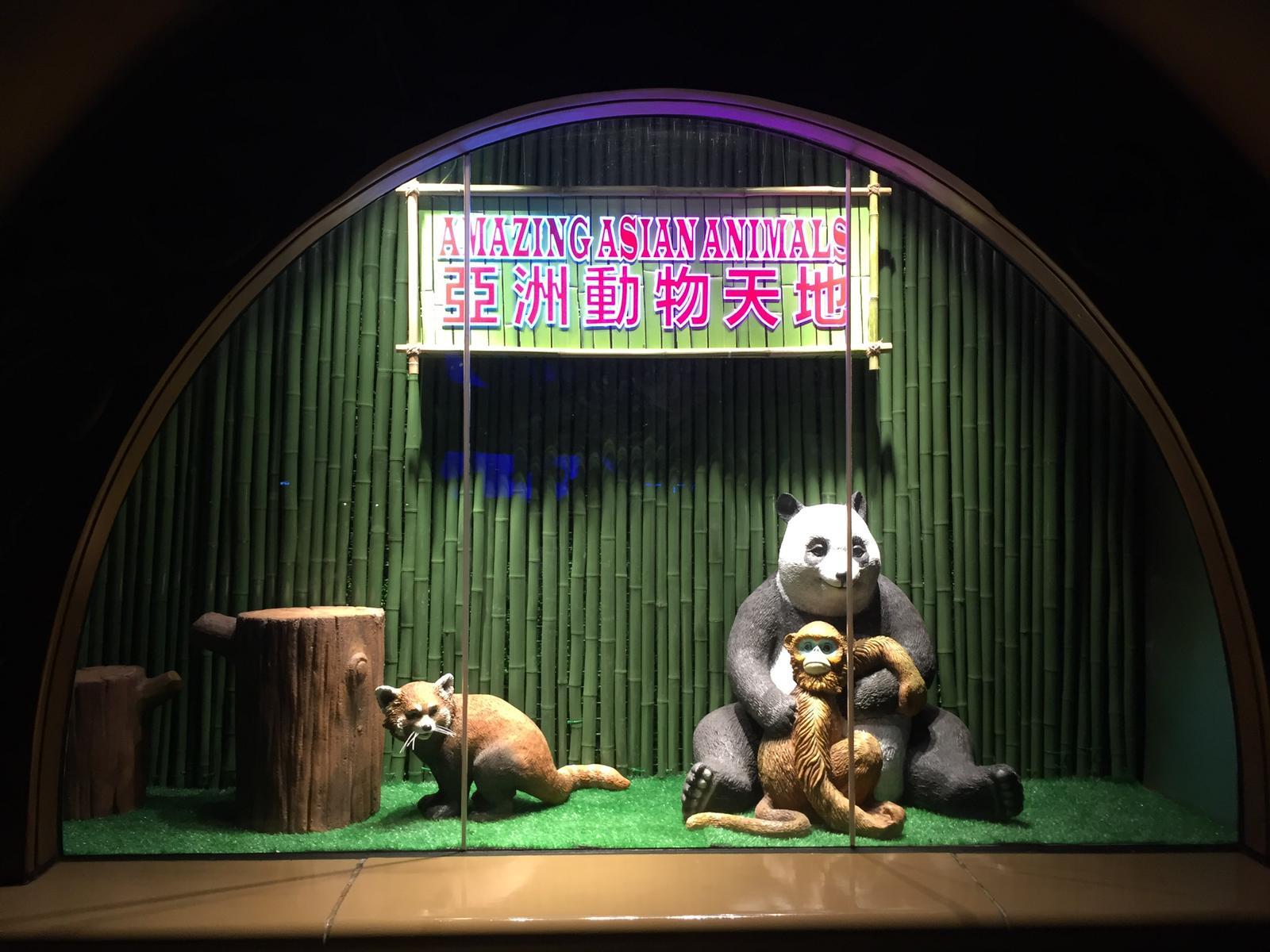 新鮮竹枝LED走燈backdrop