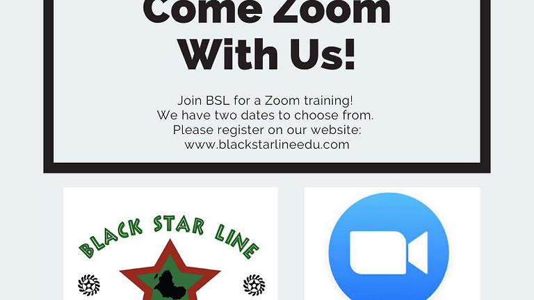 BSL's Zoom Training D