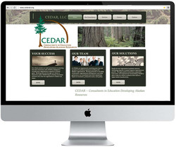 Website Design -  CEDAR, LLC