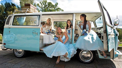 Brides and bridesmaids with Bluebell