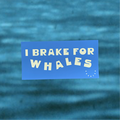I Brake For Whales Bumper Sticker