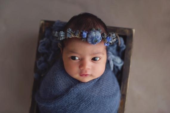 Adelaide Newborn Photographer   Newborn Baby Photos with Baby Eva