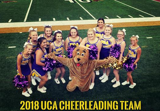 2018-2019 UCA Cheer Team