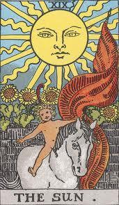 sun trump