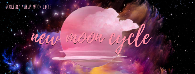 New Moon Cycle - softening 2019 & opening to transformation for 2020