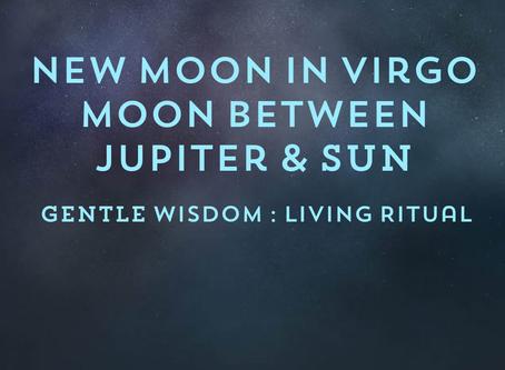 New Moon in Virgo & Serpent Wisdom