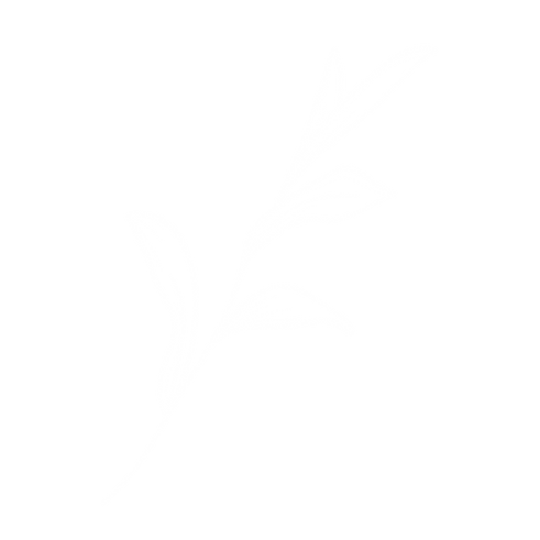 leaf-_-white_edited_edited_edited_edited