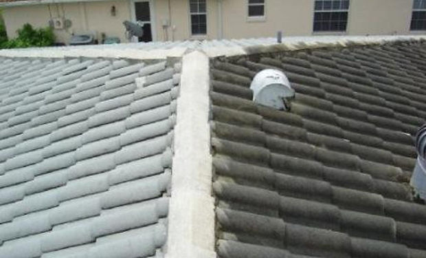 Before and after photo of a pressure washed tile roof.