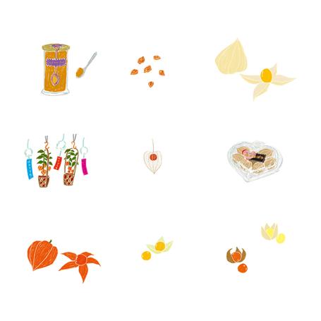 『食べる通信』vol.17 挿絵