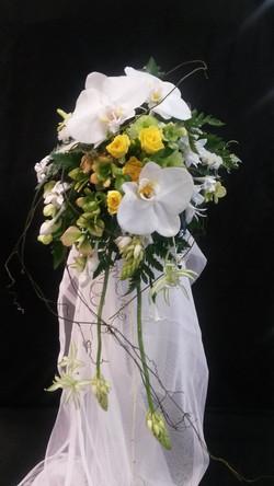 beechworth wedding supplier