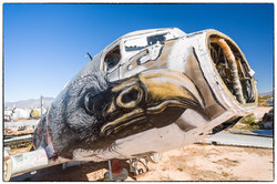 R4D 12441 - Screaming Eagle