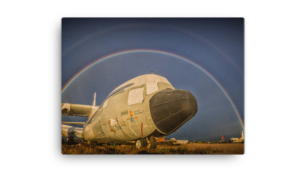 Boneyard Safari Under the Rainbow on Canvas