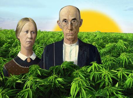 Legally Growing Medical Marijuana in Hawaii