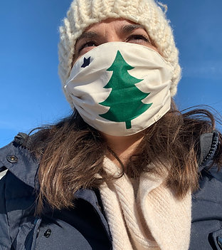 Maine Flag Mask