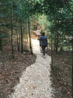 chemin en plaquette de bois