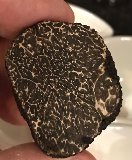 Tuber melanosporum truffe noire du Périg
