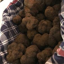 Marché aux truffes carpentras truffe noi