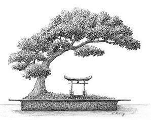 bonsai ink drawing