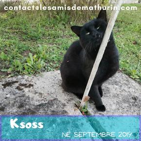 Ksoss
