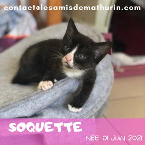 Soquette
