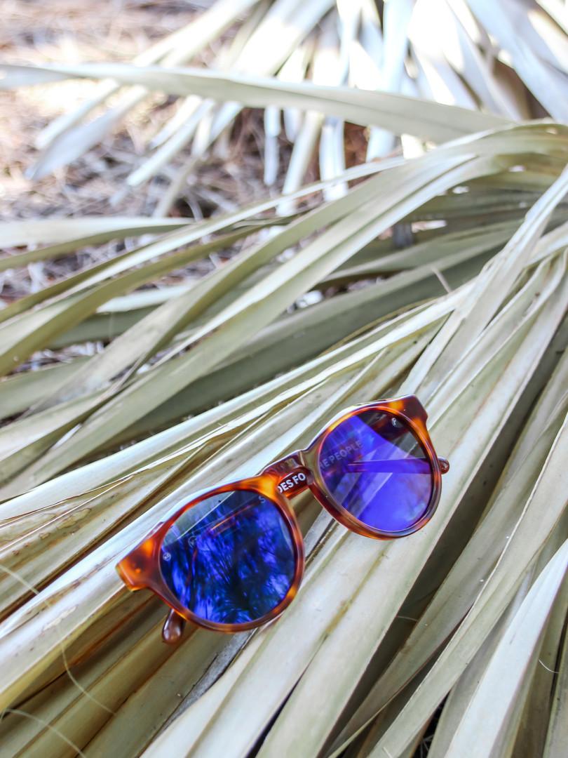 sunglasses.4 (1 of 1).jpg