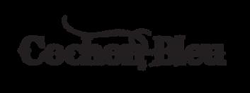 CB_logo_bandapp.png